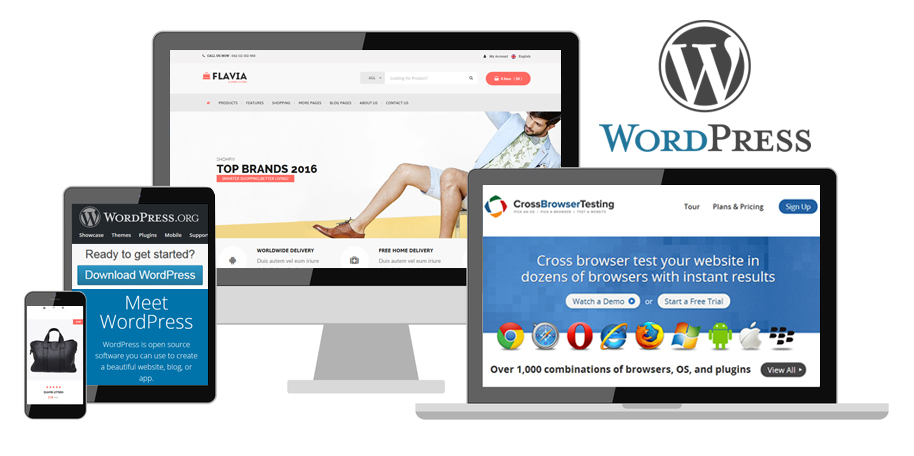 Spenta-wordpress-1